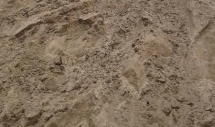 Cát lấp thường được dùng để lót nền, sàn, có chứa nhiều tạp chất, vì thế giá thành khá rẻ khoảng 230k/1m3