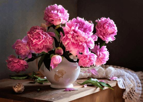 Màu hồng phấn là màu may mắn năm Kỷ Hợi 2019