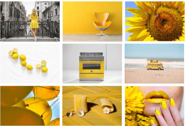Dùng màu vàng tươi năm 2019 Kỷ Hợi sẽ đem lại cho bạn nhiều may mắn